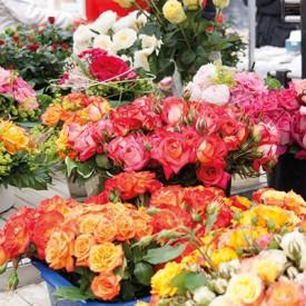Rosenmarkt